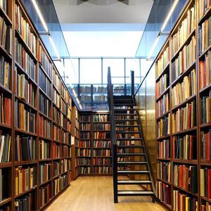 Библиотеки Знаменского